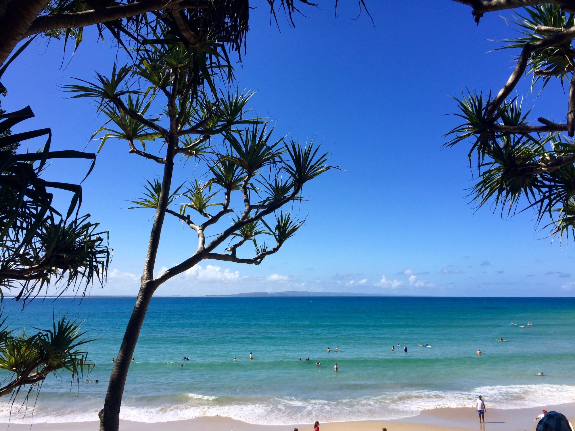 how to travel from brisbane to sunshine coast
