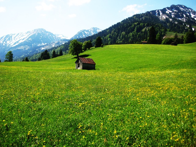 austria 29